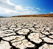Drought - 11962197