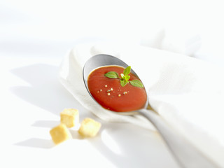 a spoonful of tomato soup, croutons beside it