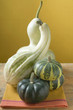 various pumpkins and squashes on cloth