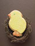 easter biscuit (yellow chick) in easter nest