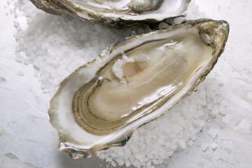 fresh oysters, opened, with coarse salt