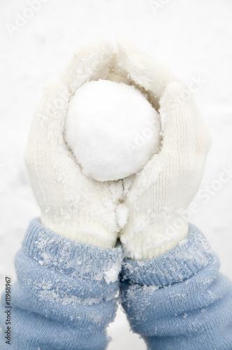 Snowball - 11968967