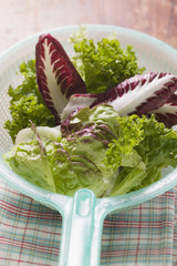 assorted salad leaves in plastic strainer