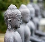 buddhas in reihe