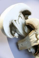halved button mushroom