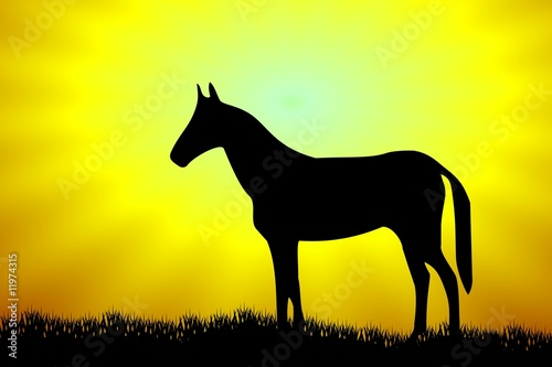 Leinwandbild Motiv Horse