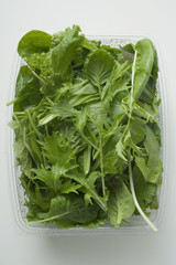spinach and japanese mizuna in plastic container