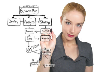 Business Woman Writing Plan