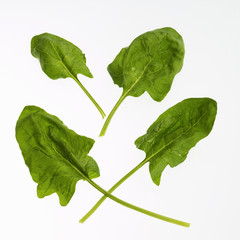 four spinach leaves