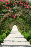 Rose Arch In the Garden - 11982317