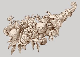 Detail Horn cornucopia