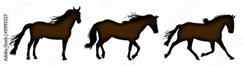 silhouette of horses standing, trotting, and galloping