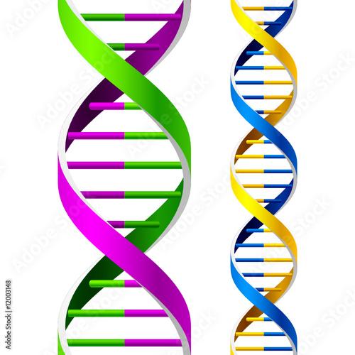 Vector DNA Strands. Seamless.