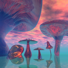 LAND  OF  THE  GIANT  MUSHROOMS