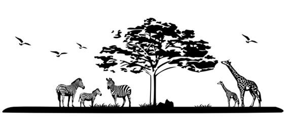 Die Landschaft Afrikas