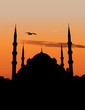 Vector silhouette of the Blue Mosque in Istanbul