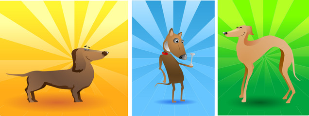 vector funny dogs with bone