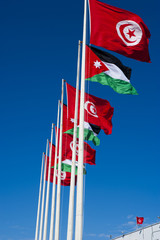 Tunisan flags