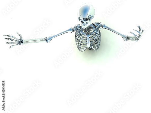 Skeleton In A Pose 5