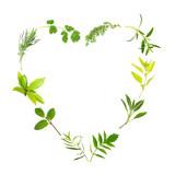 Fototapety Herb Leaf Heart