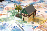 Money of euro for purchase of the private house