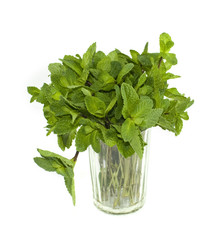 Green mint in glass, isolated on white