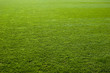 Green grass texture of a soccer field. - 12074341