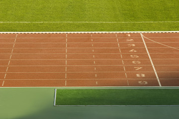 Running tracks and green grass in a stadium