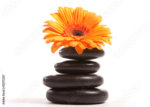 hot stones with orange flower
