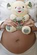 Embarazada con osito