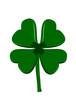 Lucky Four Leaf Clover - Saint patricks Day