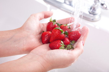 Washing Fresh Strawberries
