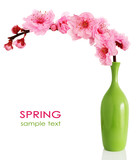 Blooming spring cherry branch in vase