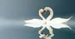 Leinwanddruck Bild - Love Swans