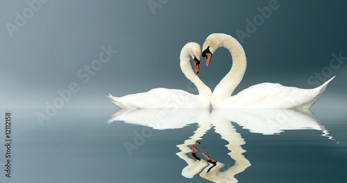 canvas print picture Love Swans