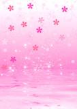 Cherry blossoms - 12143768