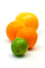 Orangen,Zitrone,Grapefruit und Limette