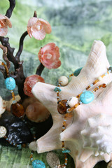 Seashell Jewelery