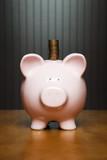 Balancing your budget poster