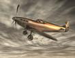 Spitfire 090219 01
