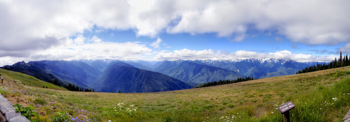 Hurricane Ridge Panorama
