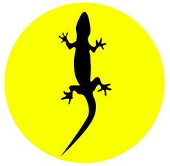 Icono de iguana