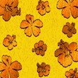 Tiger Flowers - Background - Hibiscus