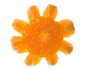 Sun made of citrus over white