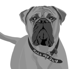 beware of dog sign, vector