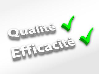 Qualité / Efficacité (image 3D)
