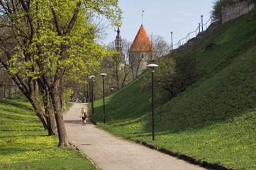 park Shnelli in Tallinn. Spring