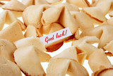 GOOD LUCK! - backlit fortune cookies over white poster