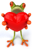 Fototapety Grenouille avec un coeur