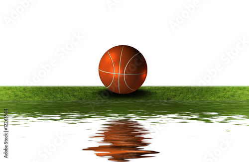 basket ball on the green grass